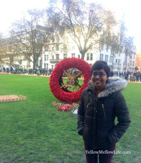 Remembrance day in London