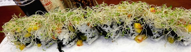 rice-and-dough_jungle-roll_2