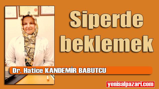 Şalpazarı Aile Hekimi Dr. Hatice Kandemir Babutcu'nun yazısı