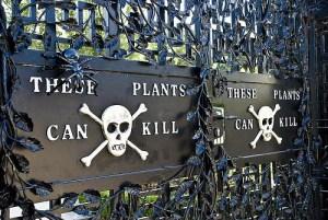 Alnwick Poison Gardens