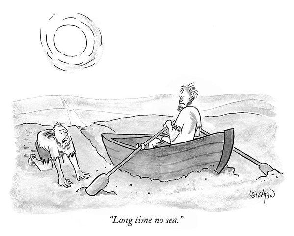 Long time no sea