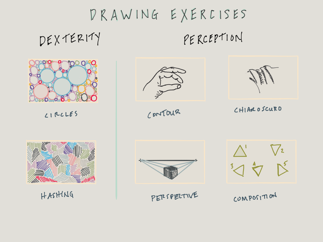 A visual guide to beginner's drawing exercises.