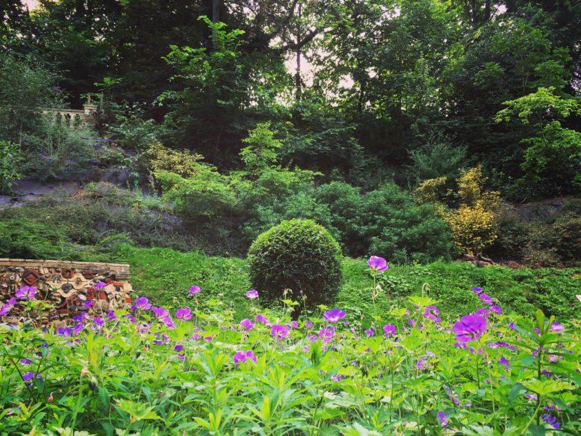 Save the plantation gardens norwich historic victorian botanical gardens england