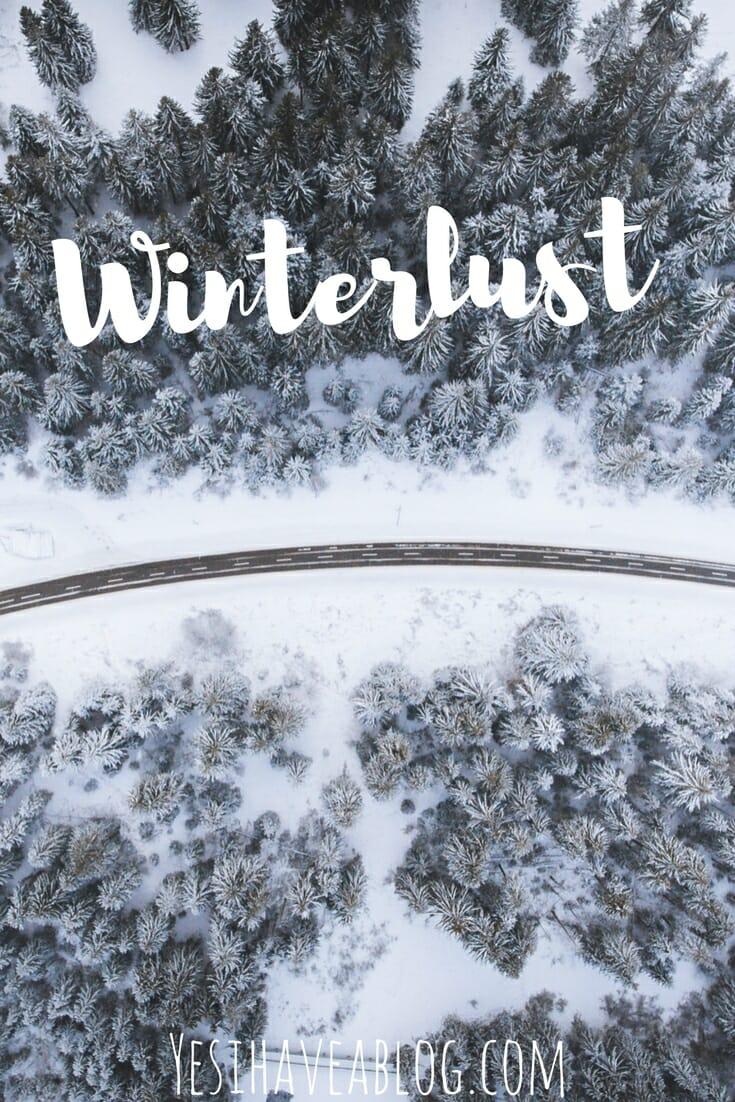 Snowy Winter Forest Scene   Winterlust - Yesihaveablog   Winter Travel