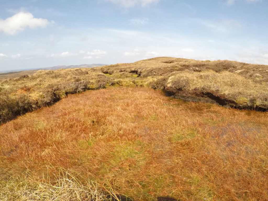 The infamous bog - Hiking in Shetland