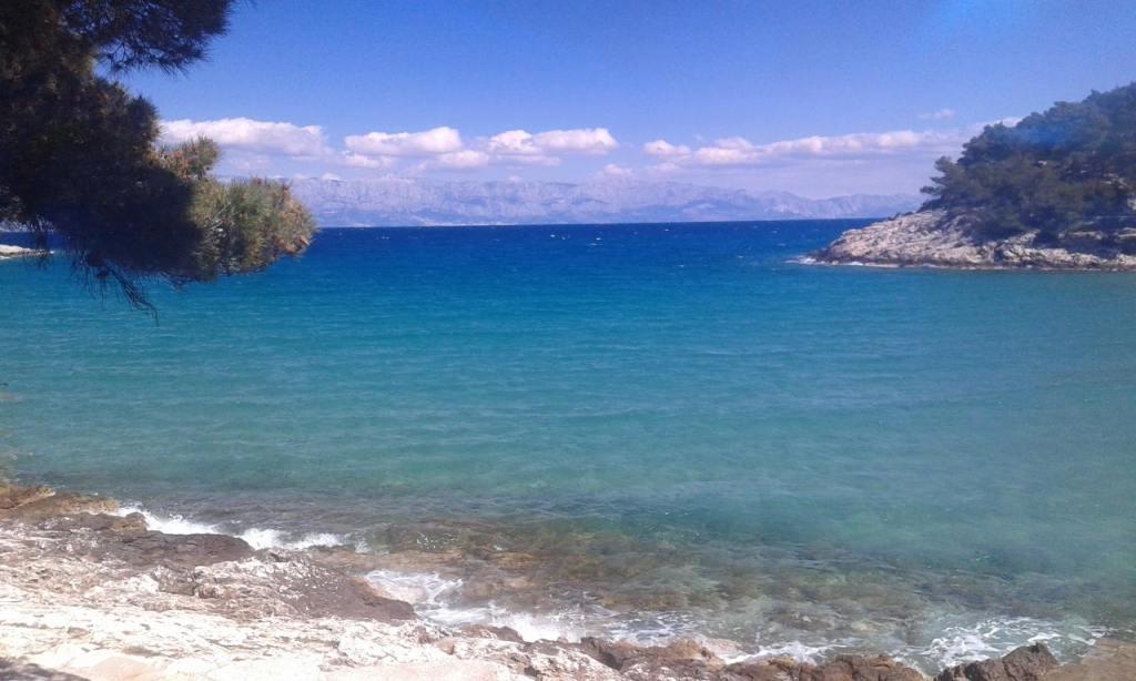 A beach near Jelsa, Hvar island, Croatia. Copyright Yes Jane Can.