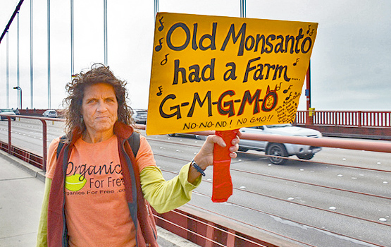 Monsanto sign. Photo by Steve Rhodes.