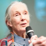 Jane Goodall on Climate Change, Technology, and What Makes Us Different From Chimps