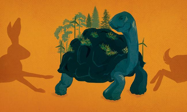 Patient finance illustration by Jennifer Luxton.