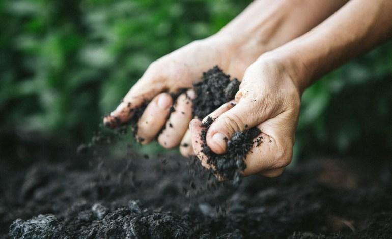 soil-hands.jpg
