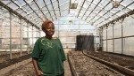 Land, Co-ops, Compost: A Local Food Economy Emerges in Boston's Poorest Neighborhoods
