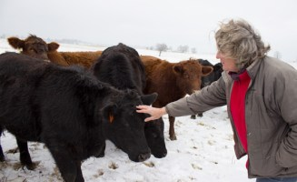 """Jennifer """"Tootie"""" Jones visits the beef cattle she raises at Swift Level Farm in West Virginia"""