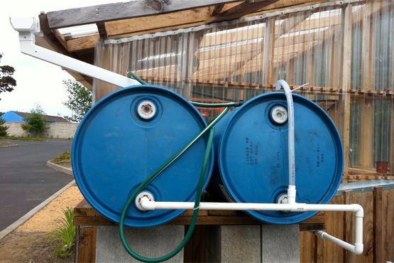 Rain barrels by Gail Langellotto.