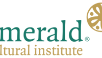 The Emerald Cultural Institute has over 30 years of experience providing quality English language and professional development programmes to groups and individuals of all ages from more than 50 different countries.