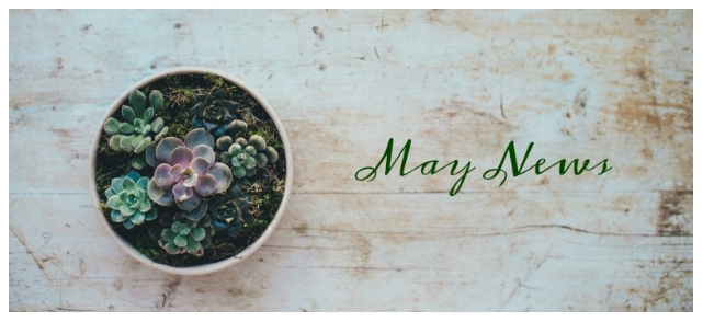Welcome to the month of May!