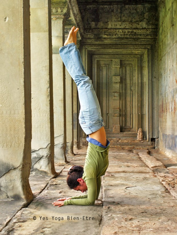 pincha mayurasana angkor wat sophie yes yoga bien-etre