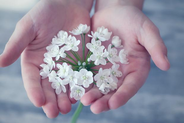 fleurs main