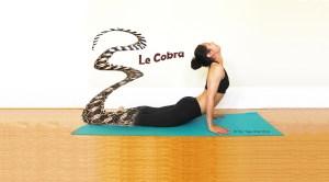 Bhujangasana-cobra-queue-serpent-yes-yoga-bien-etre