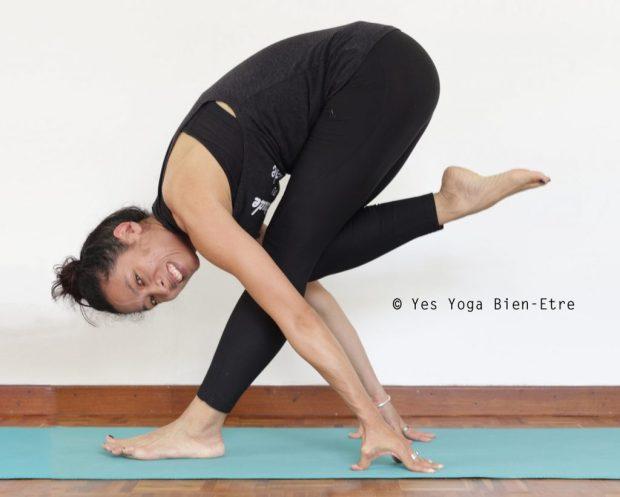 yoga posture du flamant rose