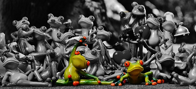 frogs-1413787_640