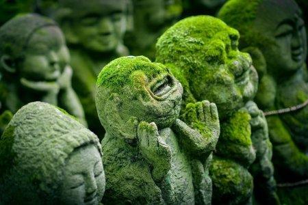 Buddha's Brain Summary