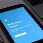 Hatching Twitter Summary