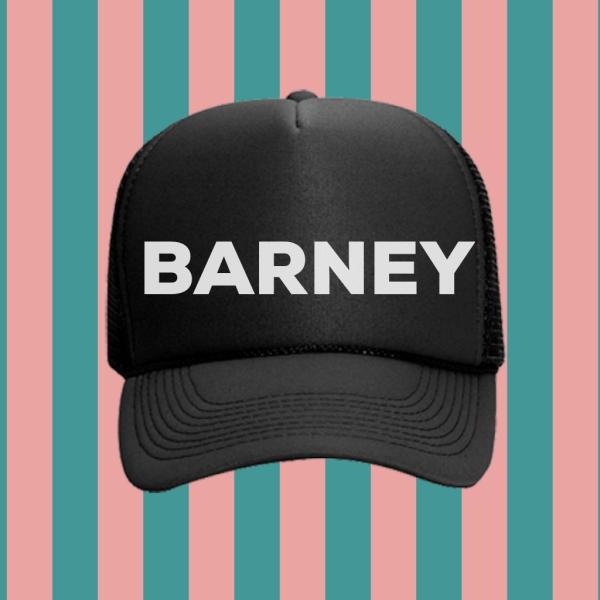Barney Foam Trucker Hat