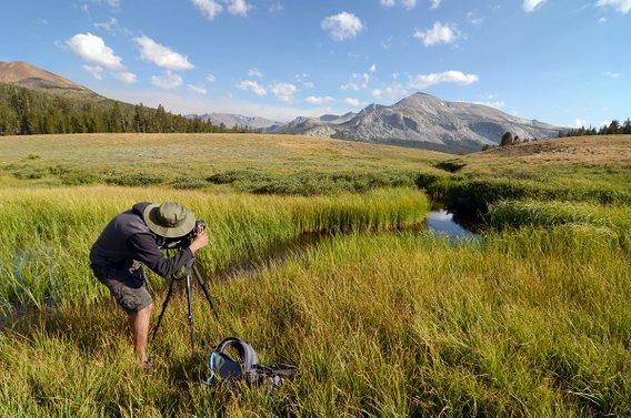 Yosemite-Full-Day-Photo-YExplore-Cripps-568