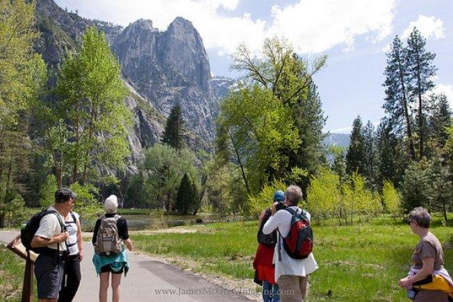 Yosemite Nature Tours McGrew