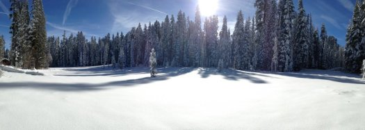 Yosemite-Summit-Meadow-YExplore-DeGrazio-DEC2014
