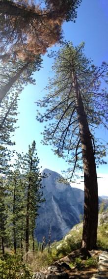 Yosemite-HalfDome-Verticle-YExplore-DeGrazio-APR2015