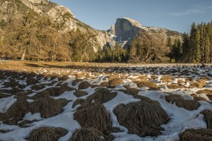 Yosemite Season's Greetings