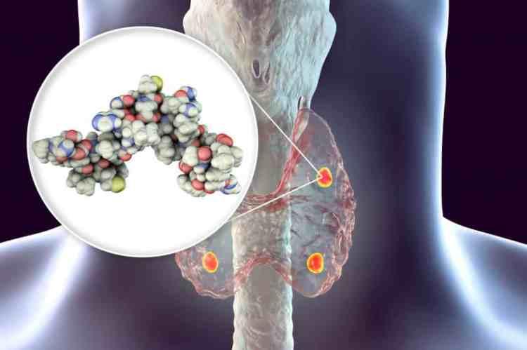 Ποια ορμόνη μπορεί να προκαλέσει καρδιαγγειακά προβλήματα;