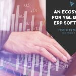An Ecosystem for YGL Beyond ERP software