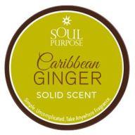 Caribbean Ginger Solid Scent 0.5oz