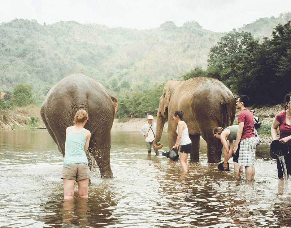 Bathing the elephants is one of the most enjoyable experiences :)