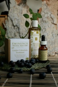 Eminence skin care containers, posing with blueberries and some kind of creeping houseplant.
