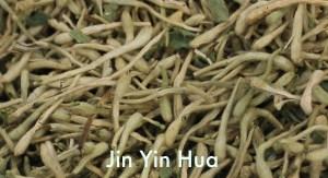 Jin Yin Hua - Chinese herb for acne
