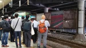 Shingu to Osaka the train that seemed famous