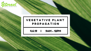 Greenhouse Basics: Vegetative Plant Propagation @ The Yisrael Family Urban Farm | Sacramento | CA | US