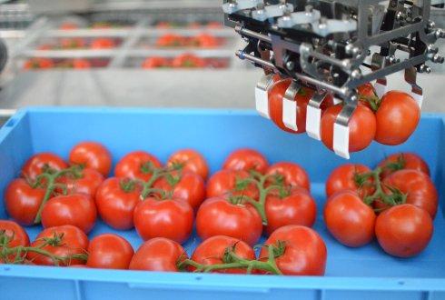 ワーヘニンゲン大学農業ロボットイメージ