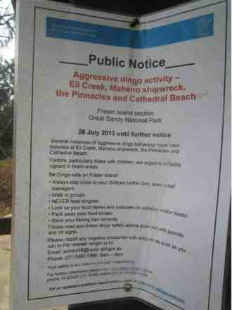 Notice explaining how to be Dingo-safe on Fraser Island - Henny Jensen