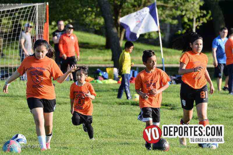 Tuzos Chicago Soccer Academy-futbol infantil