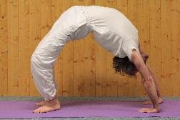 chakrasana posture complète