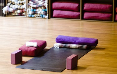 What You Need to Start Yoga