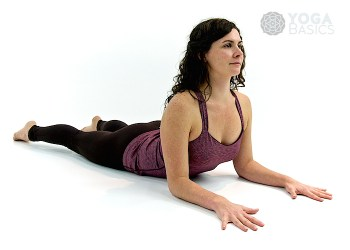 Sphinx yoga pose • salamba bhujangasana