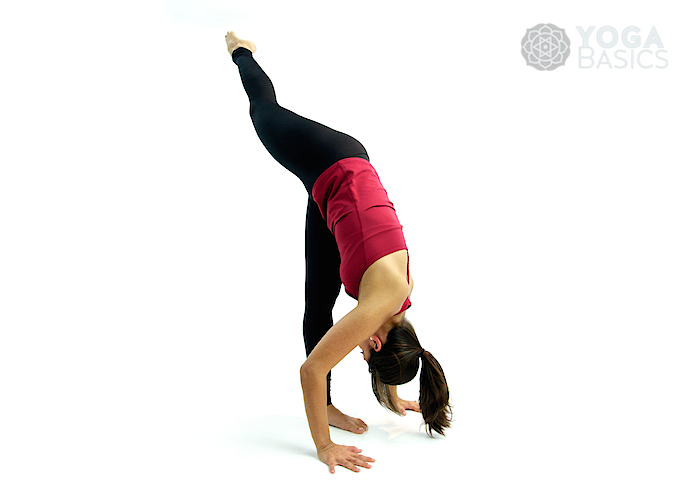 Standing Yoga Poses Yoga Basics Yoga Poses Meditation History Philosophy More