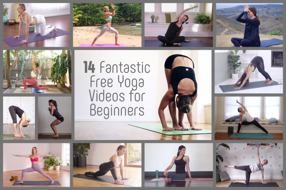 14 Fantastic Free Yoga Videos For Beginners Yoga Basics