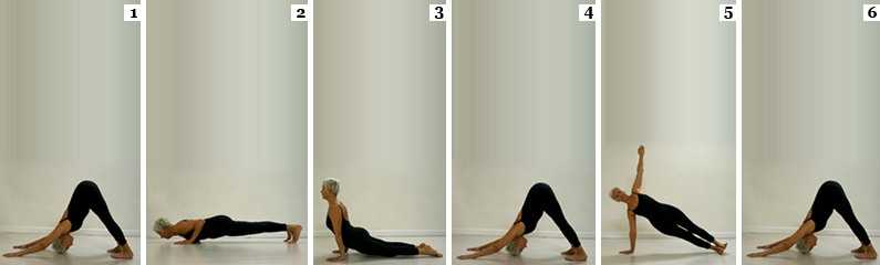 Sequenza Chatturanga Dandasana