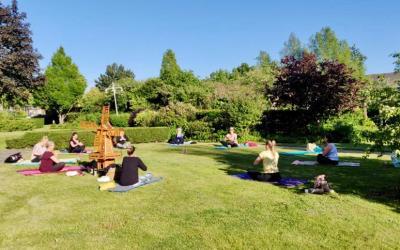 Anne's Vipassana meditatie op Insight Timer